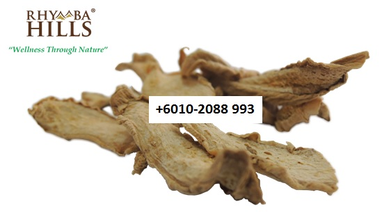 bentong ginger is one of the main ingredients in slimming tea and postnatal tea.